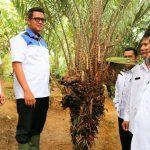 Pemkab  Bintan Dukung Petani Salak Desa Lancang Kuning