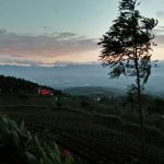 Wisata Alam Puncak Bintang Suguhkan Pemandangan Sunset Nan Elok