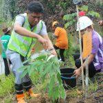 Listrik Andal dan Hutan Terjaga,  PLN Batam dan BKSDA Riau Tanam 500 Bibit Pohon di TWA Muka Kuning