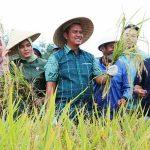 Petani Bintan Tahun ini Masih Kekurangan Pupuk