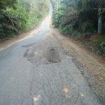 Perbaikan Jalan Desa Teluk Kembang Jambu, Warga Sanjung Kenerja Bupati Tebo