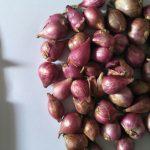 Kasiat Bawang Merah Sembuhkan Hidung Manpet Menahun