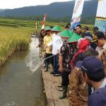 Ketua DPR RI : Siapkan Dana Budidaya Ikan Nila