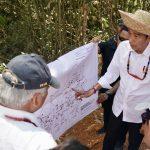 Presiden Tinjau Kawasan Segitiga Emas Kalteng, Lokasi Calon Ibu Kota