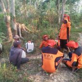 Masyarakat Peduli Api Desa Tanjung Pucuk Jambi Berjibaku Padamkan Api