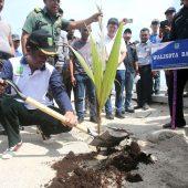 Walikota Tanam Pohon Kelapa Gading di Pulau Putri