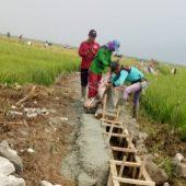 Dana Bantuan P3A Desa Sungai Abu Bermasalah ?