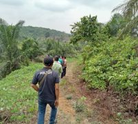 Dinas Kehutanan Prov Jambi Terkesan Mandul Tangani Dugaan Penyerobotan Lahan Hutan Produksi oleh  PT Tebo Indah