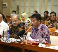 Kepala BP Batam Rudi Hadiri RDP  Komisi VI DPR RI