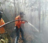PBK dan Kepolisian Padamkan Kebakaran Hutan Tanjung Pinggir