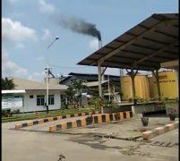 Masyarkat Desa Naga Timbul Keluhkan Polusi Udara Pabrik Sawit PT PP