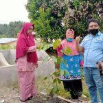 Sambut Hari Lingkungan Hidup, DPC LSM IDLH Pelalawan Laksanakan Kegiatan Penanaman Pohon
