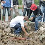 Plt Walikota Medan Tanam 800 Pohon Mangrove di Kelurahan Sri Mati