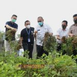 Akhyar : Masyarakat Wajib Laksanakan Protokol Kesehatan