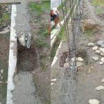 Dua Item Pekerjaan di SDN 101918 Kecamatan Beringin Deli Serdang Rawan Penyimpangan