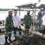 Lantamal IV Tanjungpinang Gelar Panen Ikan Kerapu Keramba Jaring Apung
