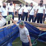 Lanal Ranai Panen Ikan Lele Hasil Budidaya