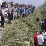 Pelaku Pembunuhan Pasutri di Perkebunan Tebu PTPN II Berhasil Ditangkap Polisi